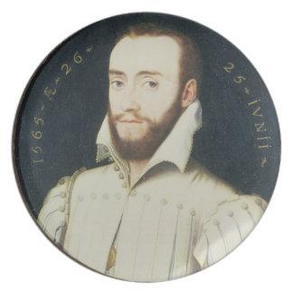 T34055 Portrait of a Bearded Gentleman, Aged 26, 1 Plate