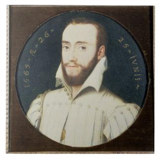 T34055 Portrait of a Bearded Gentleman, Aged 26, 1 Tile