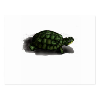 T is for Turtle Postcard