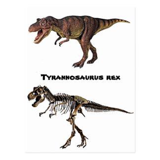 T-rex Flesh-n-Bone,Postcard Postcard
