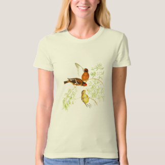 T-Shirt Vintage Spectacled Finch Birds 1850-54