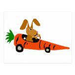TA- Funny Bunny Rabbit Driving Carrot Car Cartoon