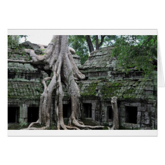 ta prohm in cambodia greeting cards