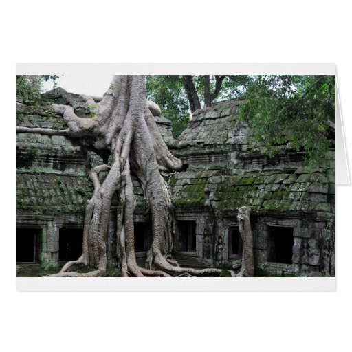 ta prohm in cambodia greeting cards