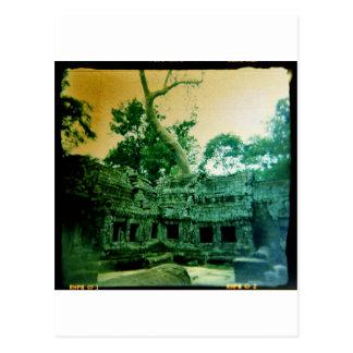ta prohm temple near angkor wat post card