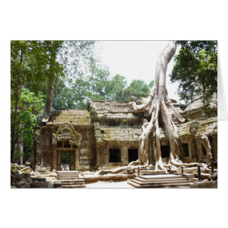 ta prohm tree card