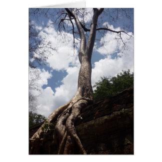 ta prohm tree greeting card