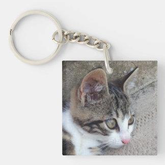 Tabby and White Kitten Key Ring