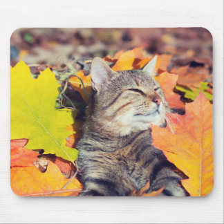 Tabby Basking in the Foliage Mouse Mat