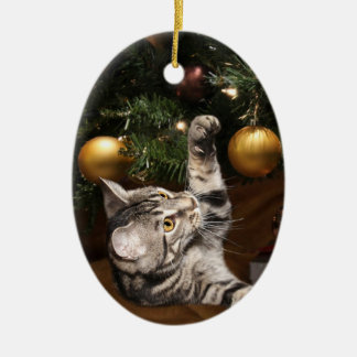Tabby cat and Christmas tree Ceramic Oval Decoration