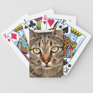 Tabby Cat Bicycle Playing Cards