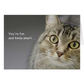 Tabby Cat Birthday Card by Focus for a Cause
