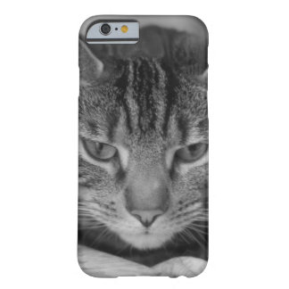 Tabby Cat Black and White Photo Barely There iPhone 6 Case
