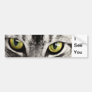 Tabby Cat Eyes Bumper Sticker Car Bumper Sticker
