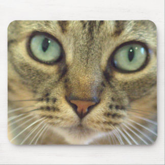 Tabby Cat Face Close Up Mouse Pad