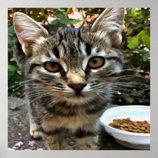 Tabby Cat Kitten Making Eye Contact Poster