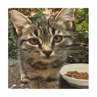 Tabby Cat Kitten Making Eye Contact Wood Wall Art