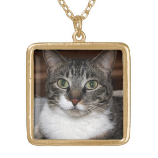 Tabby Cat Looking at You Photo Necklace