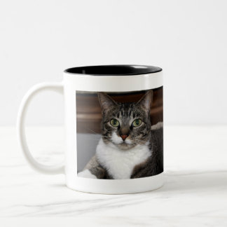 Tabby Cat Looking at You Two-Tone Mug