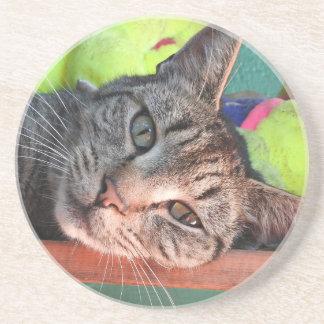 Tabby Cat Love Coaster