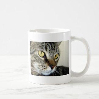 Tabby Cat Coffee Mugs