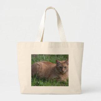 Tabby cat orange bags