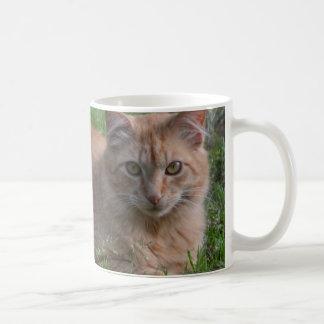 Tabby cat orange basic white mug