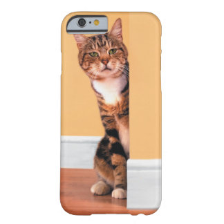 Tabby cat peeking around wall barely there iPhone 6 case