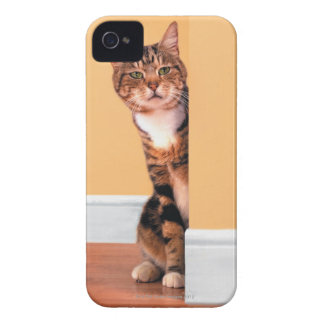 Tabby cat peeking around wall iPhone 4 Case-Mate case