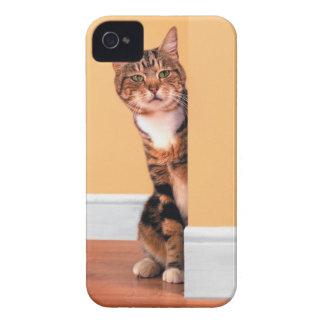 Tabby cat peeking around wall iPhone 4 covers
