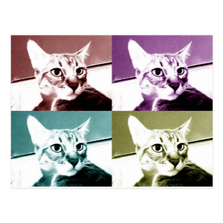 Tabby Cat - Pop Art Postcard