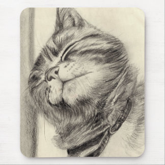 tabby cat scritching mousemat