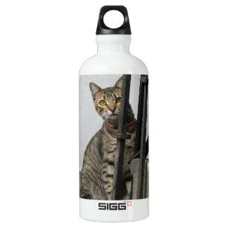 Tabby Cat SIGG Traveller 0.6L Water Bottle