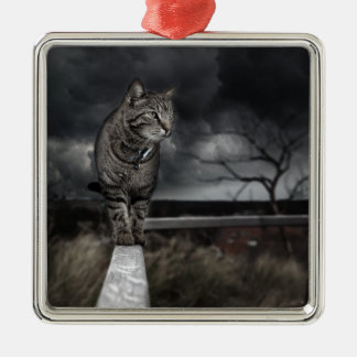 Tabby Cat Silver-Colored Square Decoration