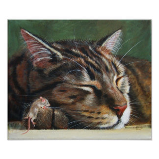 Tabby cat sleeping tiny mouse Poster