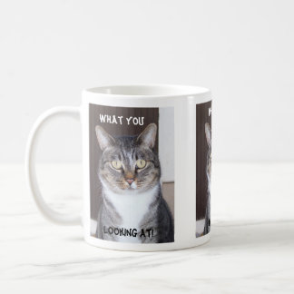 Tabby Cat What you, Looking Coffee Mug