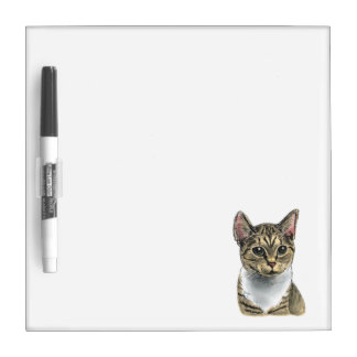 Tabby Cat With Big Eyes Dry Erase White Board