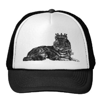 Tabby Cat With Crown Hat