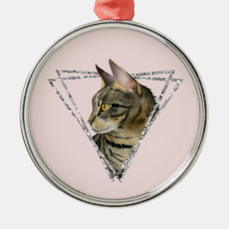 Tabby Cat with Faux Silver Glitter Frame Christmas Ornament