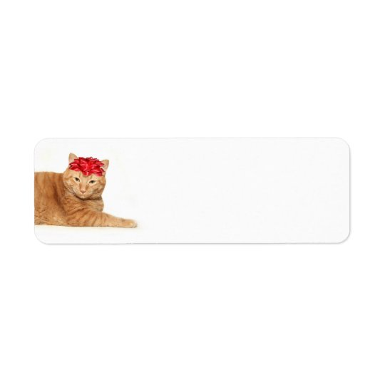 Tabby Christmas Return Address Label