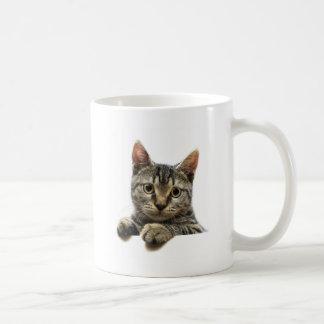 Tabby Kitten Basic White Mug