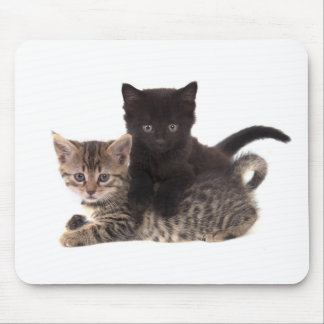 tabby kitten black kitten mouse mat