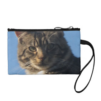 Tabby Kitten - Key Coin Clutch