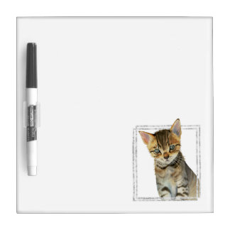 Tabby Kitten Painting with Faux Marble Frame Dry Erase Board