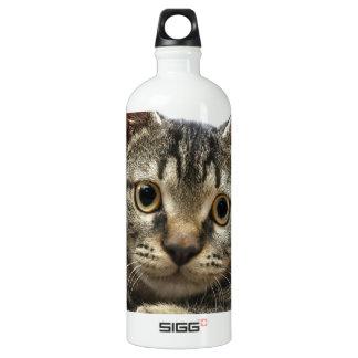 Tabby Kitten SIGG Traveller 1.0L Water Bottle