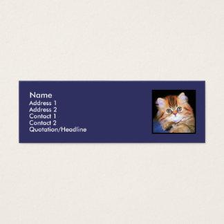 Tabby Kitten skinny business cards