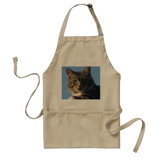 Tabby Kitten - Standard Apron
