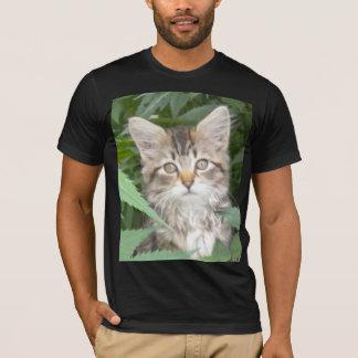 Tabby Kitten T-Shirt