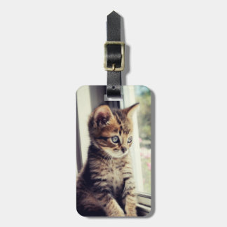 Tabby Kitten Watching Luggage Tag