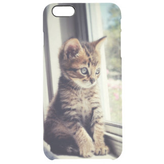 Tabby Kitten Watching Out Window Clear iPhone 6 Plus Case